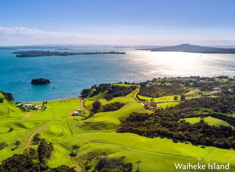 1D Waiheke Island Ultimate Day Escape